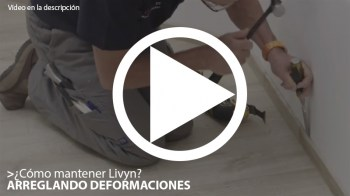 deformaciones---livyn-videos-mini